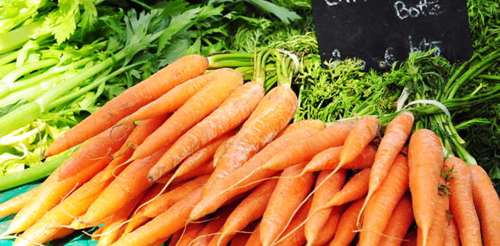 pic_rental_vegetables